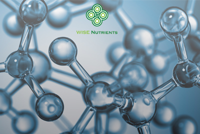 Molecular Hydrogen webinar